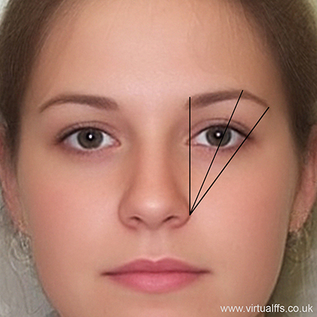 standard eyebrow plucking diagram
