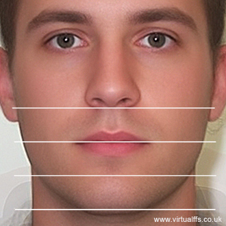 Perfect Face Proportions | www.pixshark.com - Images ...